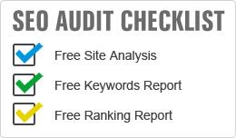 SEO Audit & Analysis Services